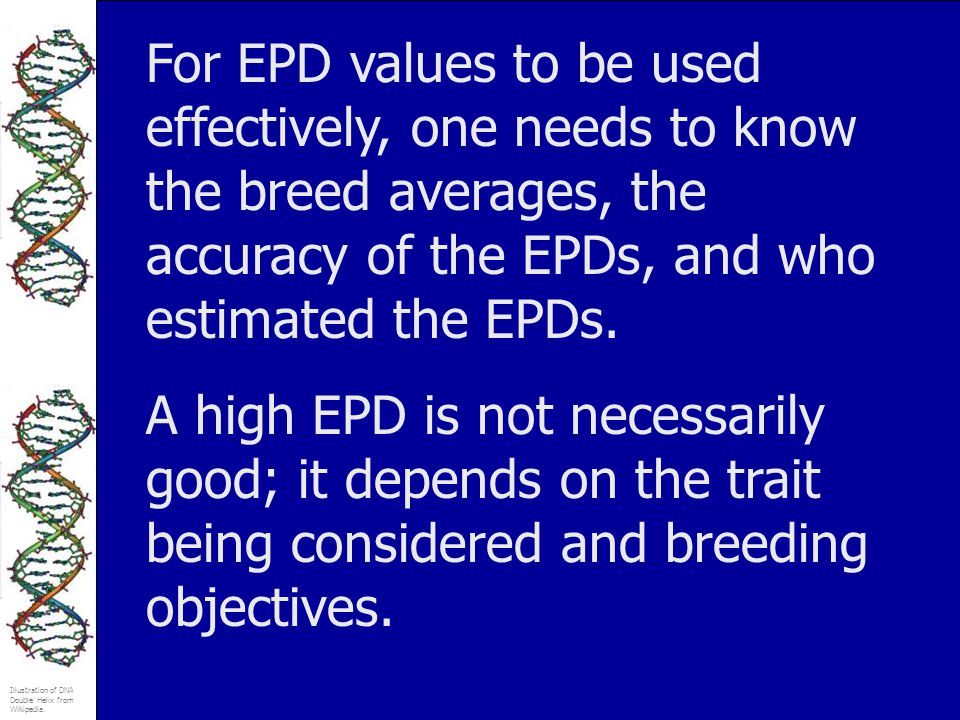 For EPD values to be used effectively, one needs to know the breed averages, the accuracy of the EPDs, and who estimated the EPDs.