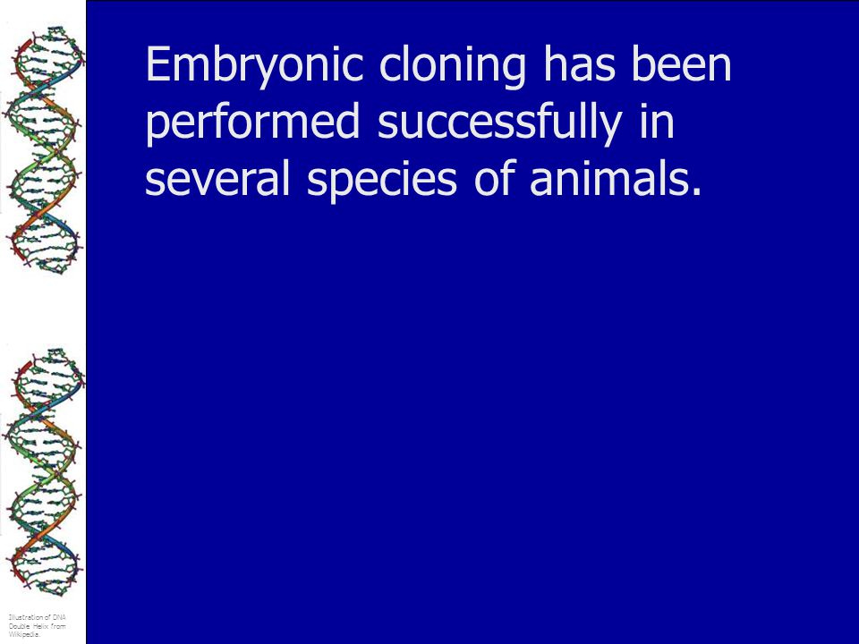 Embryonic cloning has been performed successfully in several species of animals.