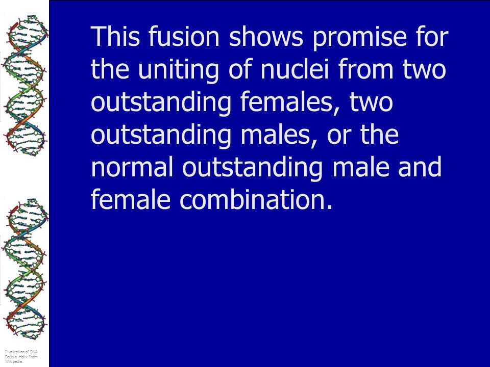 This fusion shows promise for the uniting of nuclei from two outstanding females, two outstanding males, or the normal outstanding male and female combination.