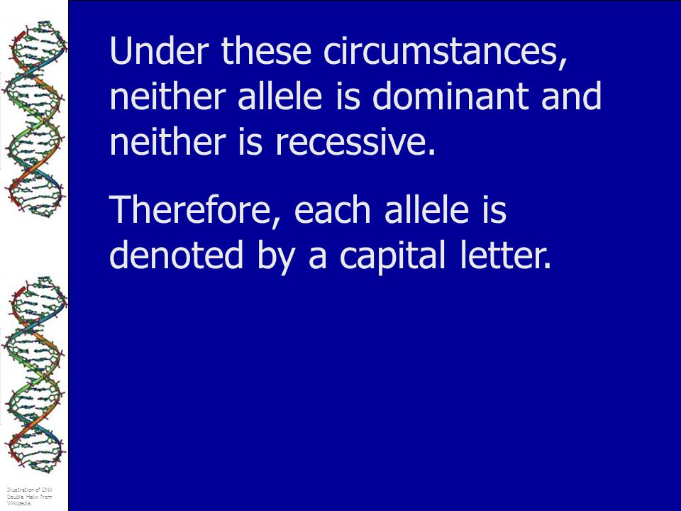 Under these circumstances, neither allele is dominant and neither is recessive.