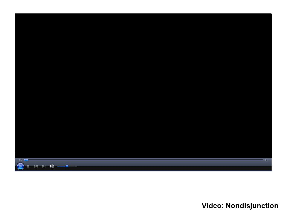 Video: Nondisjunction