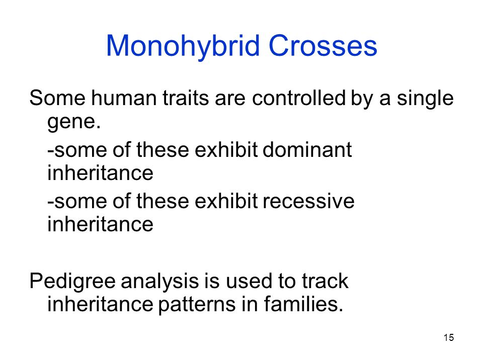 Monohybrid Crosses Some human traits are controlled by a single gene.