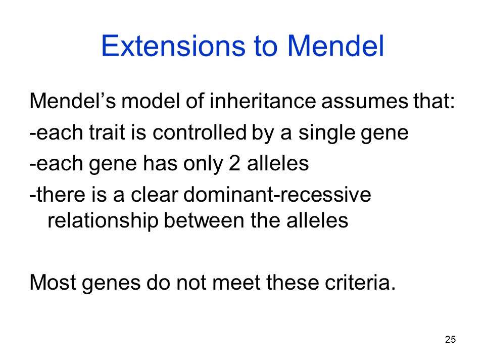 Extensions to Mendel Mendel's model of inheritance assumes that: