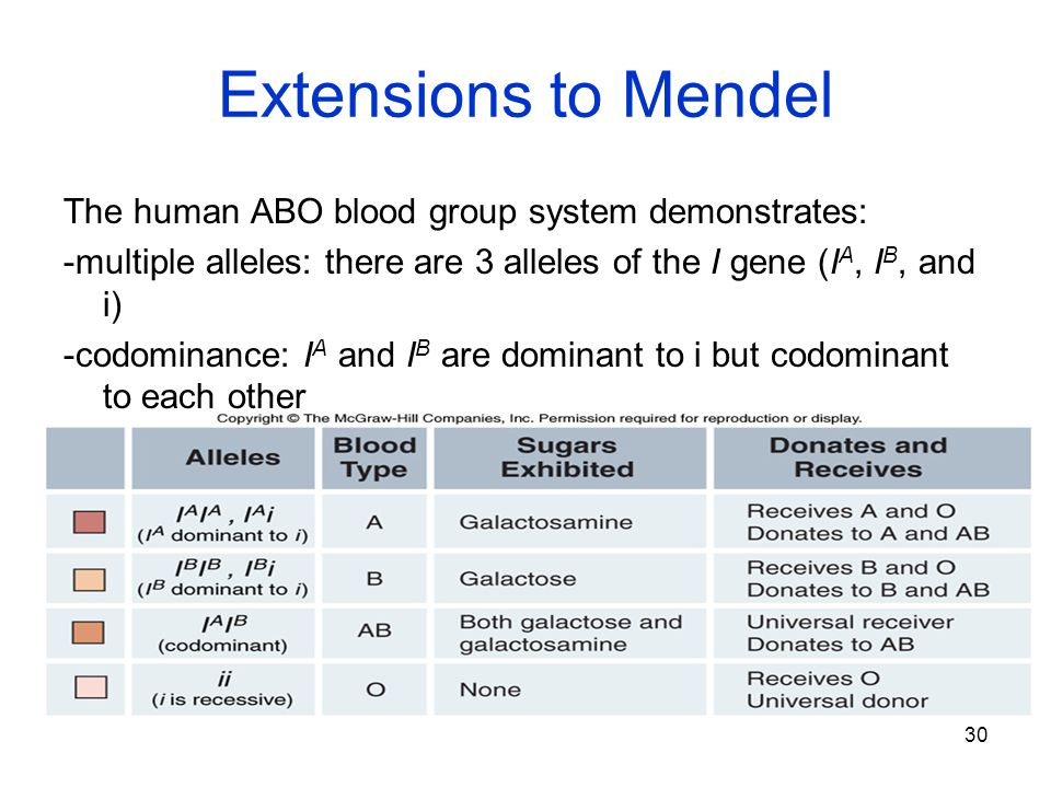 Extensions to Mendel The human ABO blood group system demonstrates: