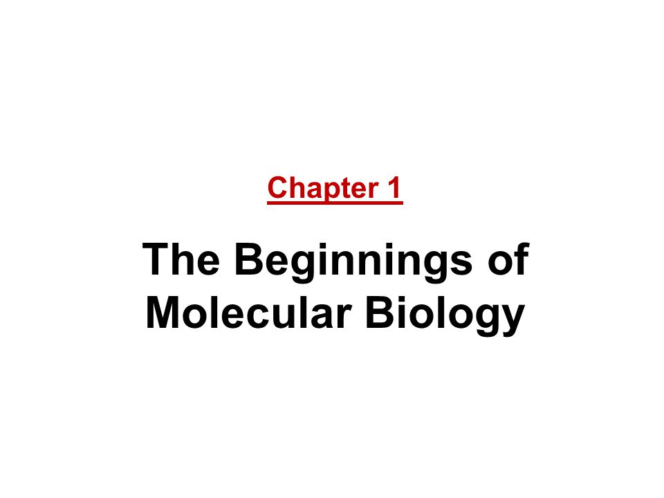 The Beginnings of Molecular Biology