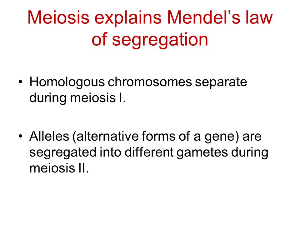 Meiosis explains Mendel's law of segregation