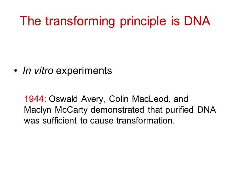 The transforming principle is DNA