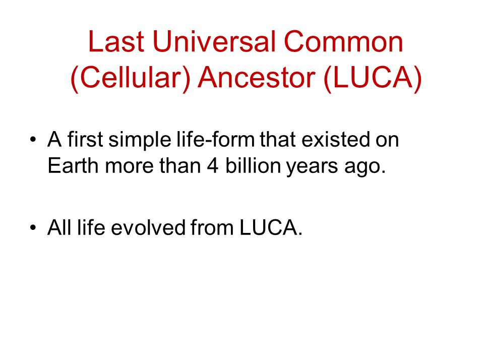 Last Universal Common (Cellular) Ancestor (LUCA)
