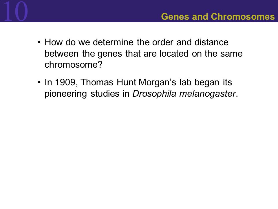 Genes and Chromosomes How do we determine the order and distance between the genes that are located on the same chromosome