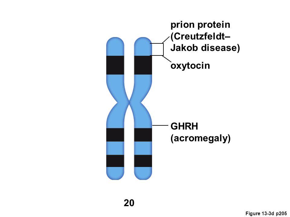 prion protein (Creutzfeldt– Jakob disease) oxytocin GHRH (acromegaly)