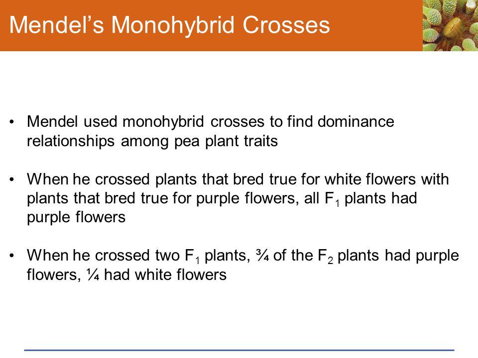 Mendel's Monohybrid Crosses