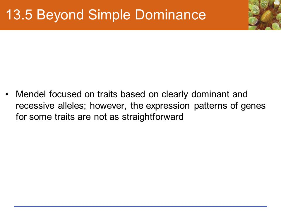 13.5 Beyond Simple Dominance