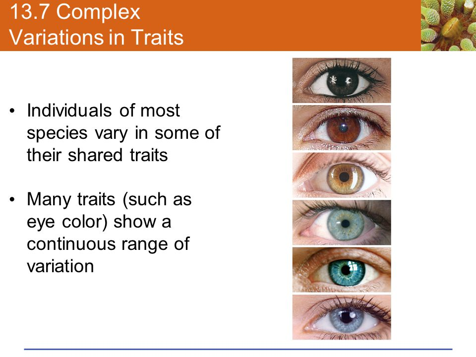 13.7 Complex Variations in Traits