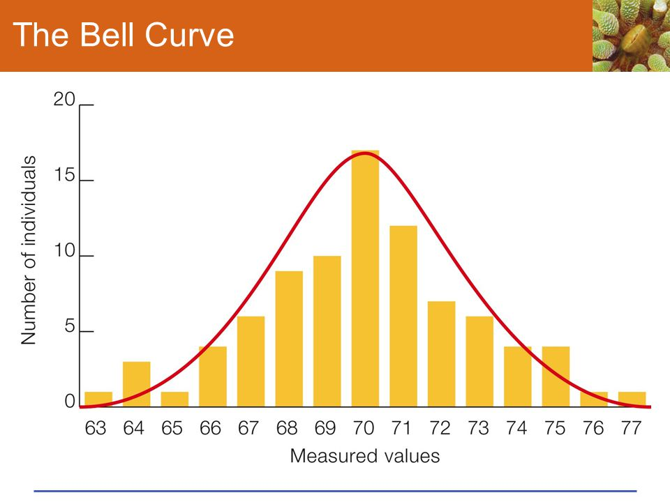 The Bell Curve C Graphing the resulting data produces a bell-shaped curve, an. indication that height varies continuously. This graph represents.