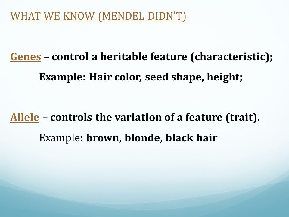 WHAT WE KNOW (MENDEL DIDN'T)