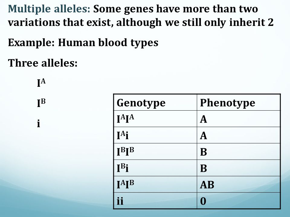 Multiple alleles: Some genes have more than two variations that exist, although we still only inherit 2
