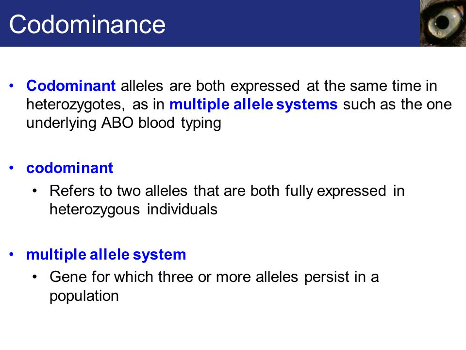 Multiple alleles definition
