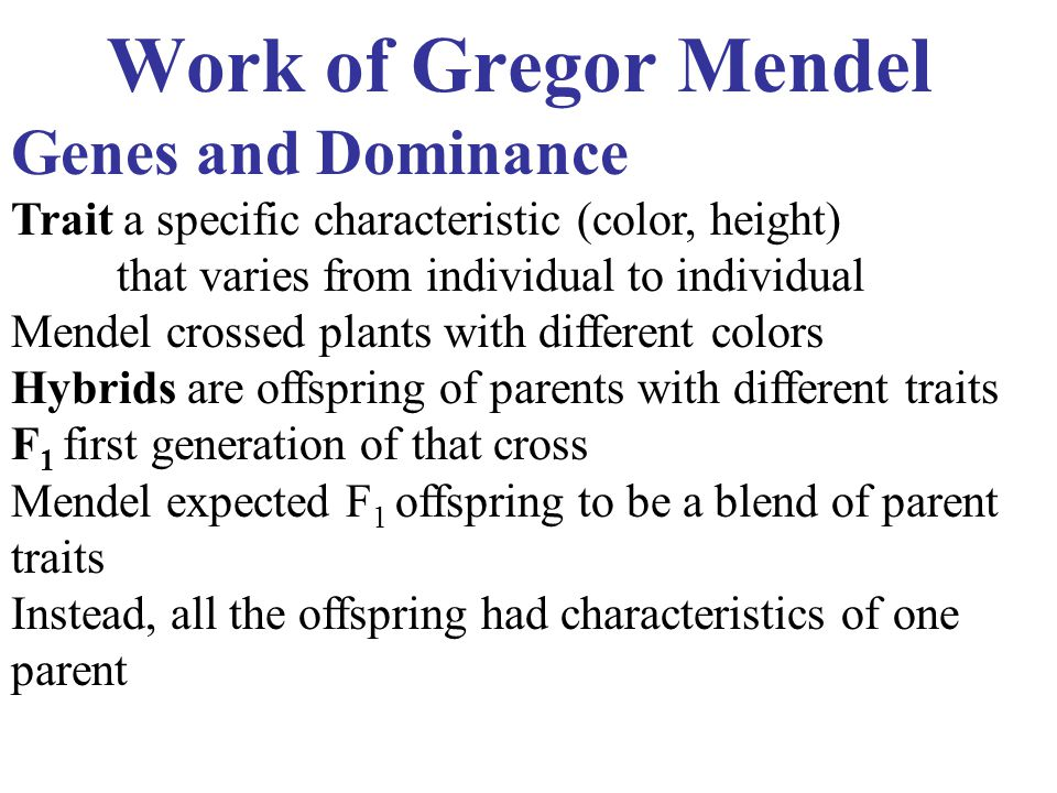 Work of Gregor Mendel Genes and Dominance