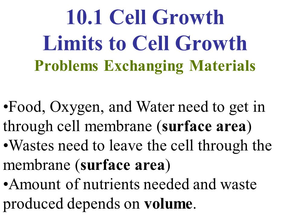 10.1 Cell Growth Limits to Cell Growth Problems Exchanging Materials