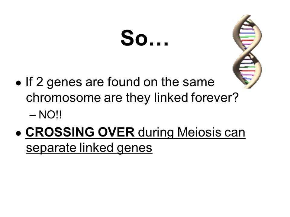 So… ● If 2 genes are found on the same chromosome are they linked forever.