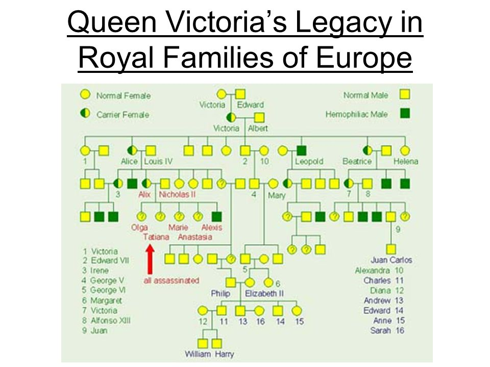 Queen Victoria's Legacy in Royal Families of Europe