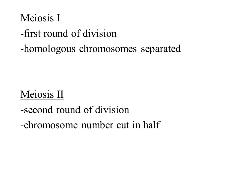 Meiosis I -first round of division -homologous chromosomes separated Meiosis II -second round of division -chromosome number cut in half