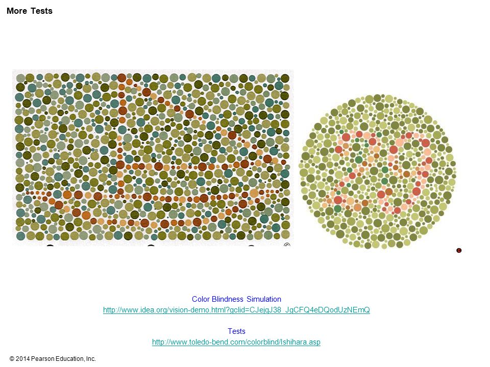 More Tests Color Blindness Simulation http://www.idea.org/vision-demo.html gclid=CJejqJ38_JgCFQ4eDQodUzNEmQ.