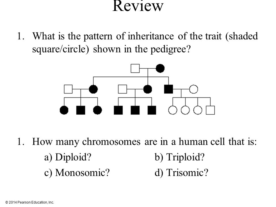 Review What is the pattern of inheritance of the trait (shaded square/circle) shown in the pedigree