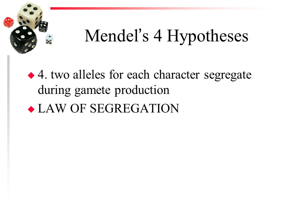 Mendel's 4 Hypotheses 4. two alleles for each character segregate during gamete production.