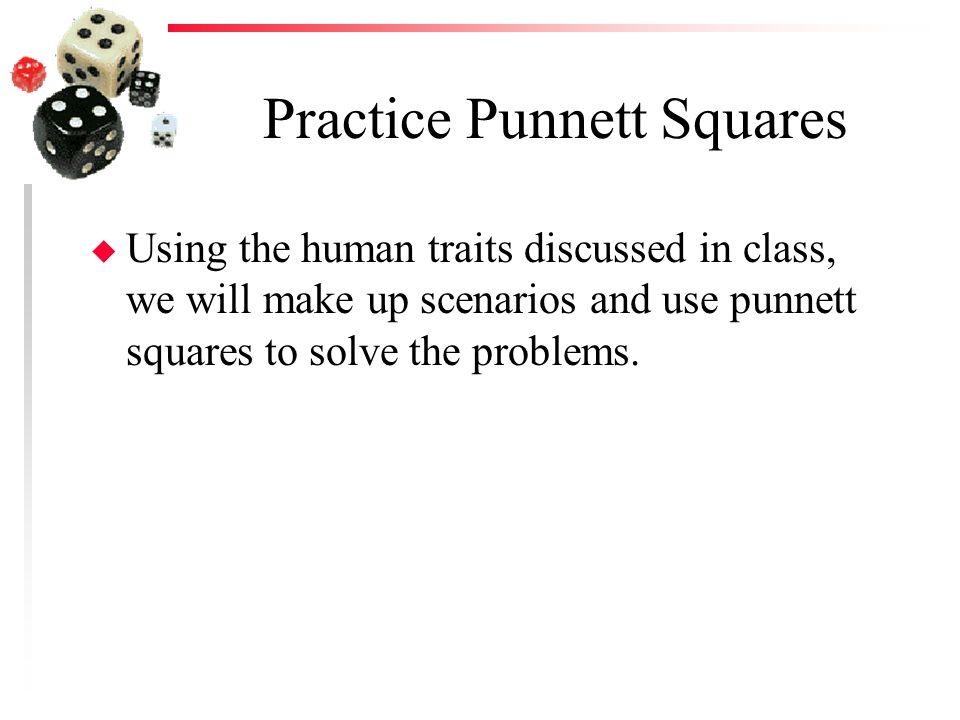 Practice Punnett Squares