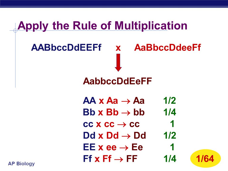 Apply the Rule of Multiplication