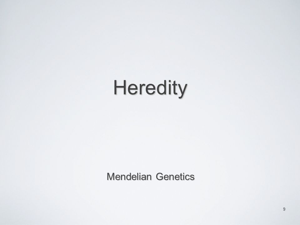 Heredity Mendelian Genetics 9