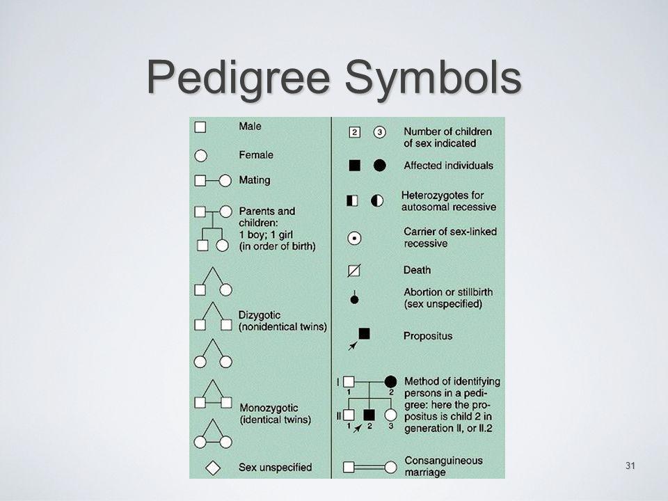 Pedigree Symbols 31