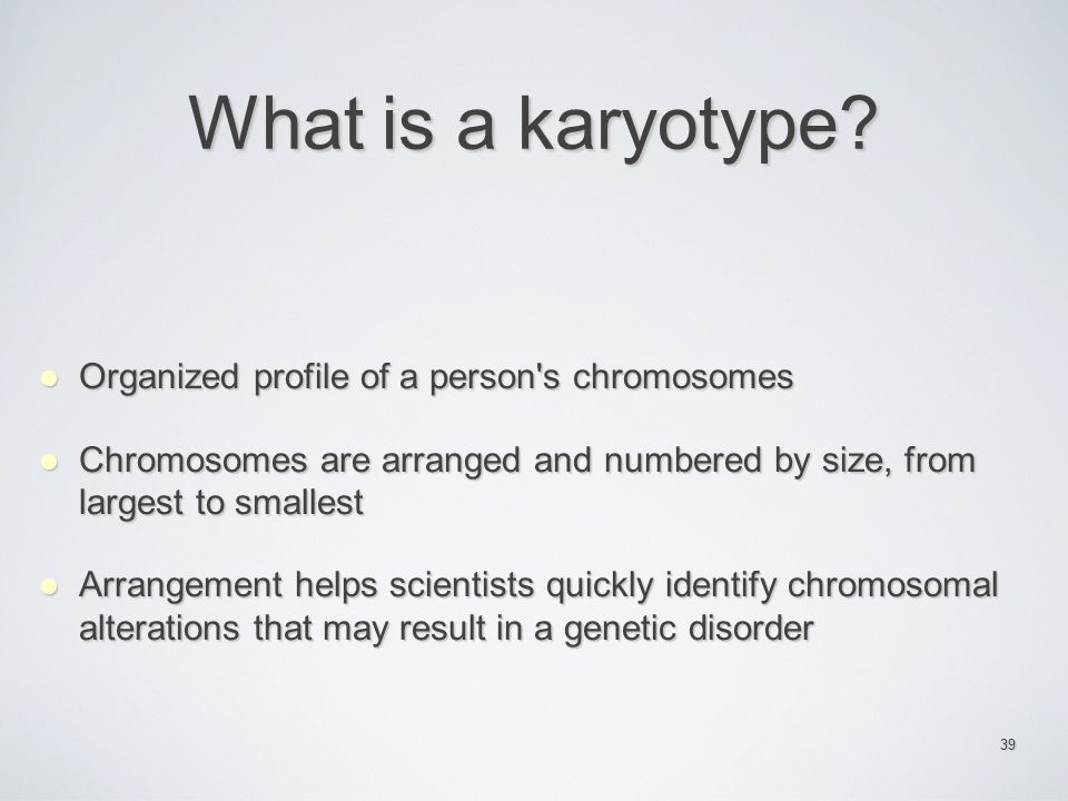 What is a karyotype Organized profile of a person s chromosomes