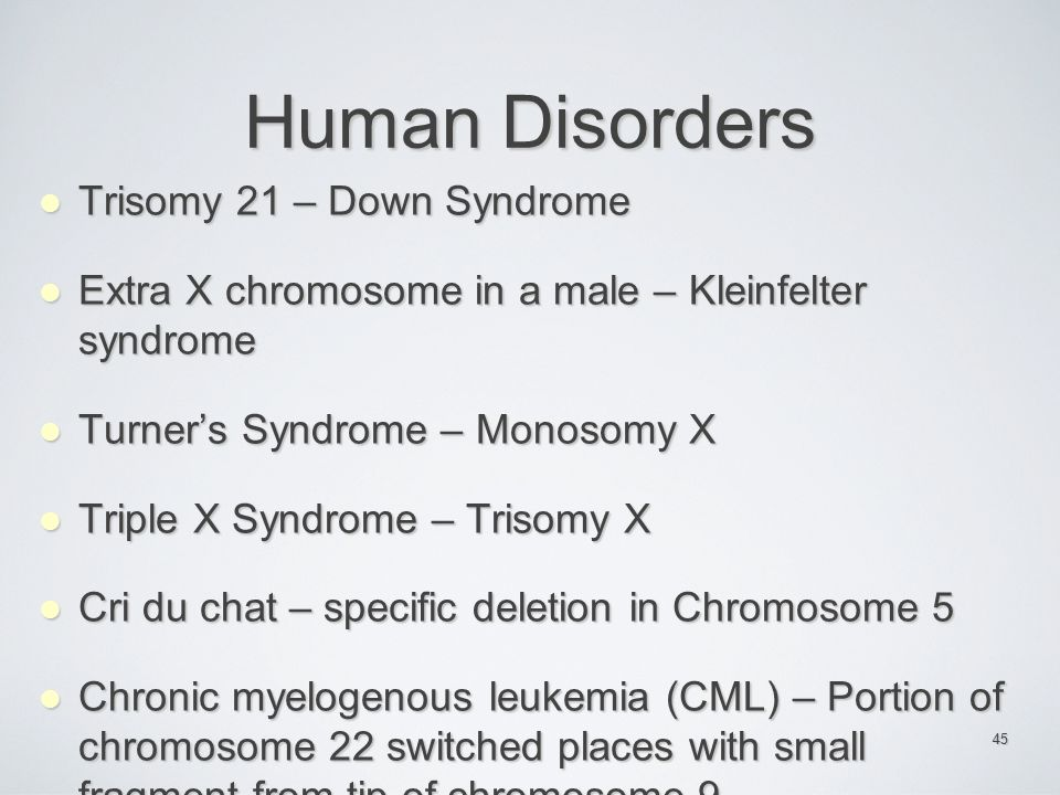 Human Disorders Trisomy 21 – Down Syndrome