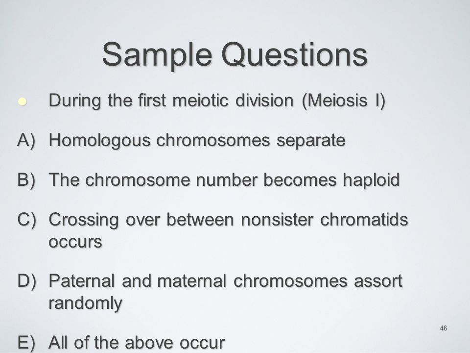 Sample Questions During the first meiotic division (Meiosis I)