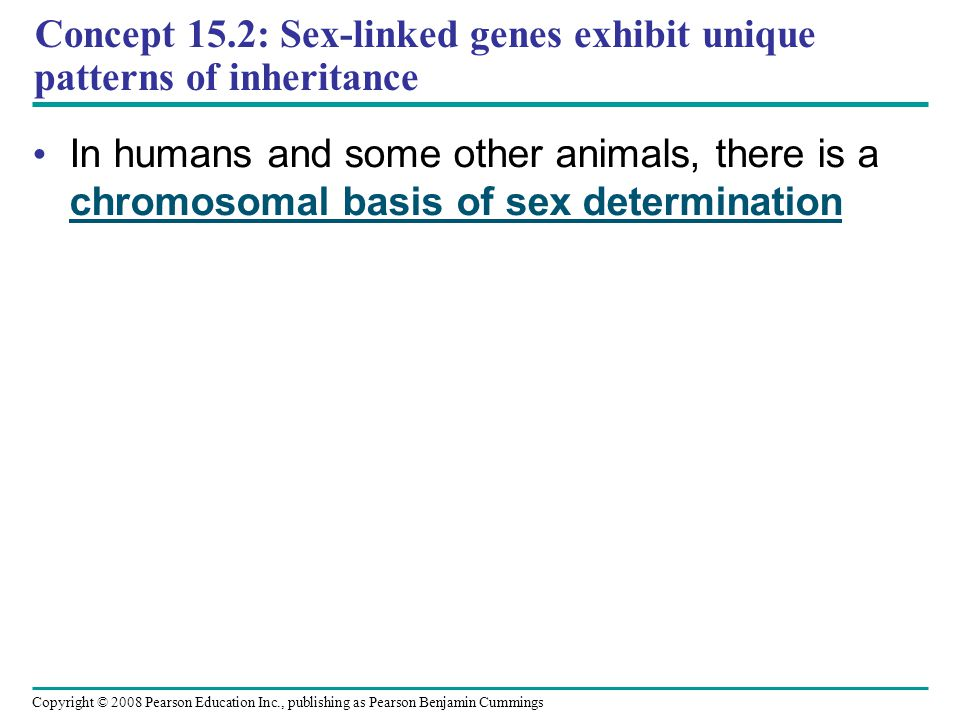 Concept 15.2: Sex-linked genes exhibit unique patterns of inheritance