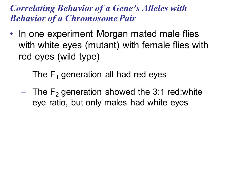 Correlating Behavior of a Gene's Alleles with Behavior of a Chromosome Pair