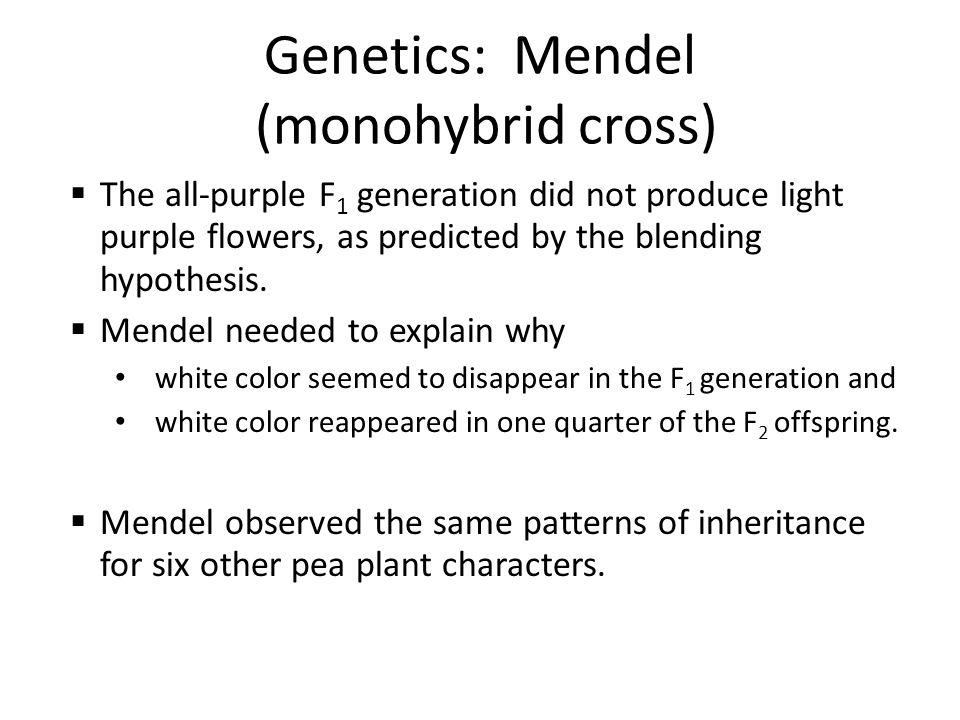 Genetics: Mendel (monohybrid cross)