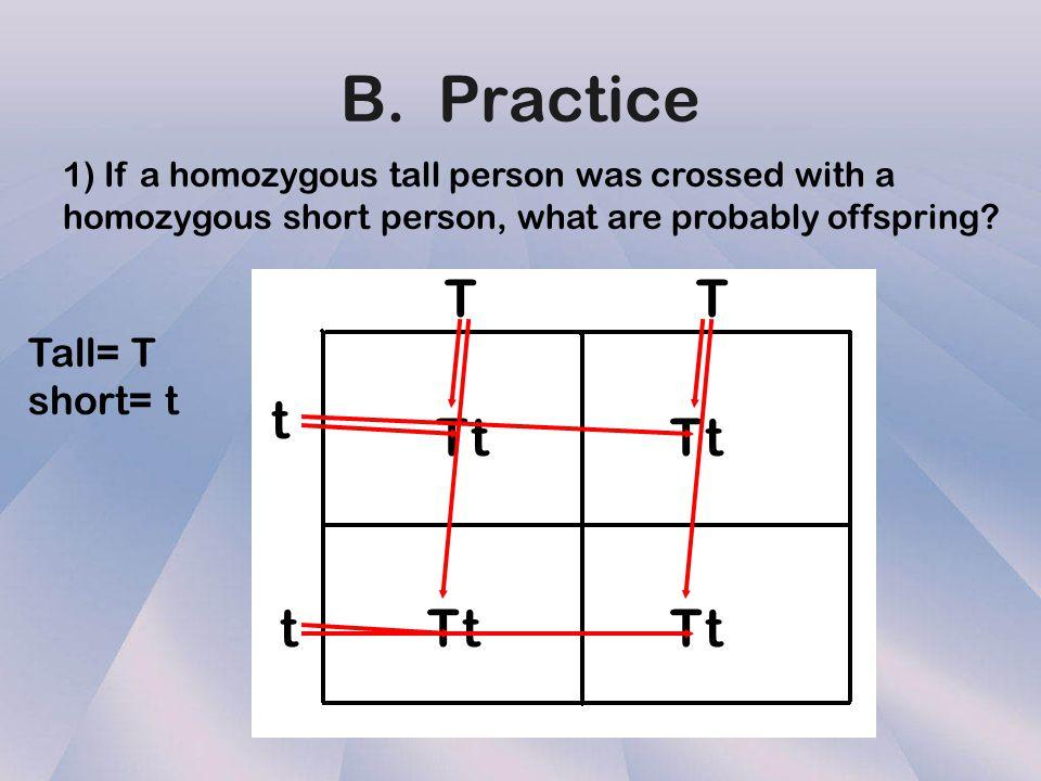 B. Practice T T t T t T t t T t T t Tall= T short= t