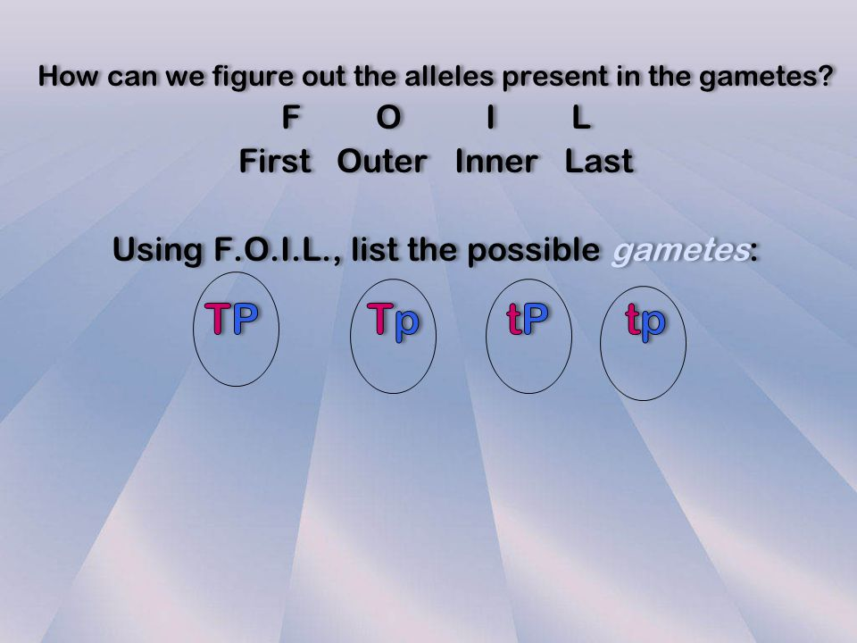 TP Tp tP tp F O I L First Outer Inner Last