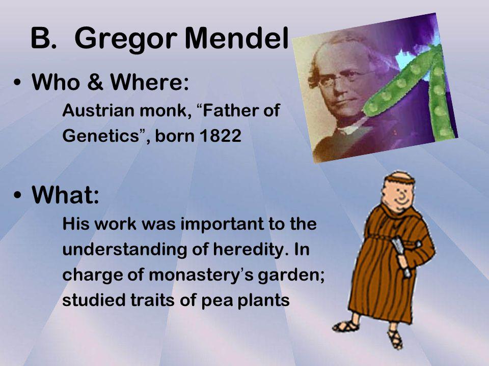 gregor mendel austrian monk The father of genetics is an austrian monk named gregor mendel - 2557467.