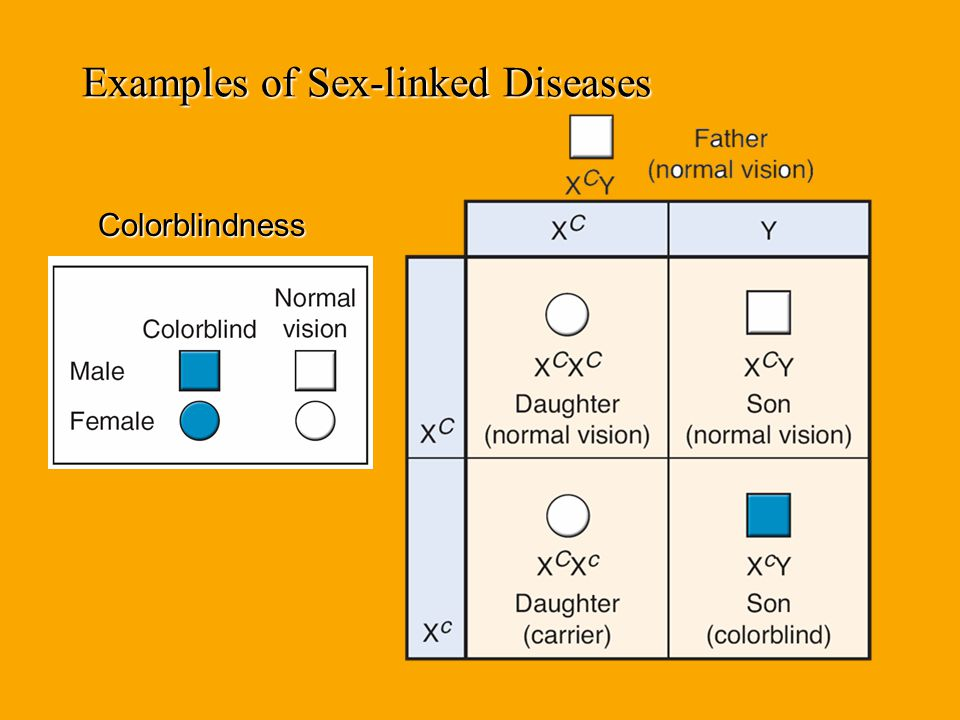 Examples of Sex-linked Diseases