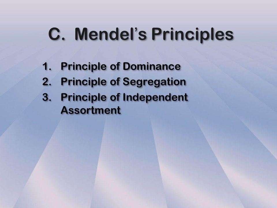 C. Mendel's Principles Principle of Dominance Principle of Segregation