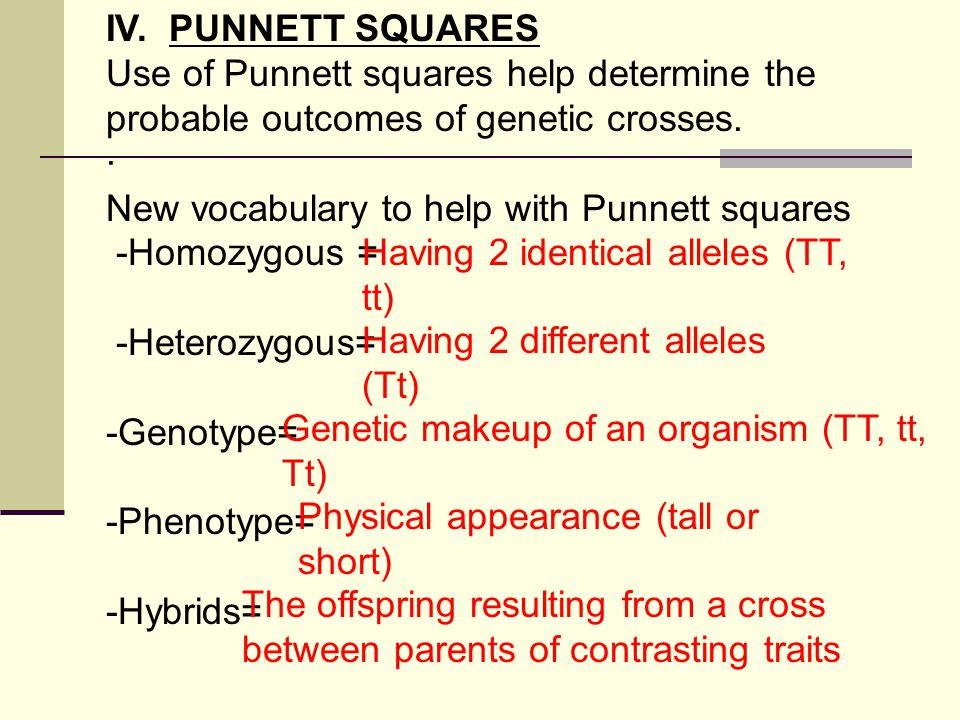 IV. PUNNETT SQUARES Use of Punnett squares help determine the probable outcomes of genetic crosses.