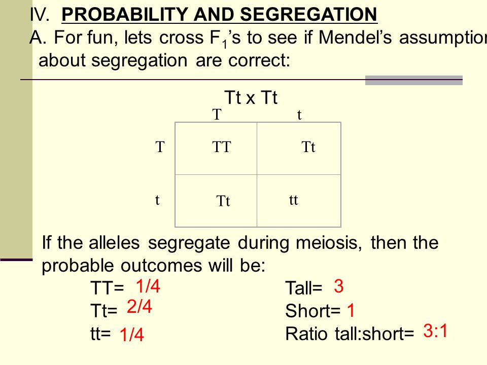 IV. PROBABILITY AND SEGREGATION