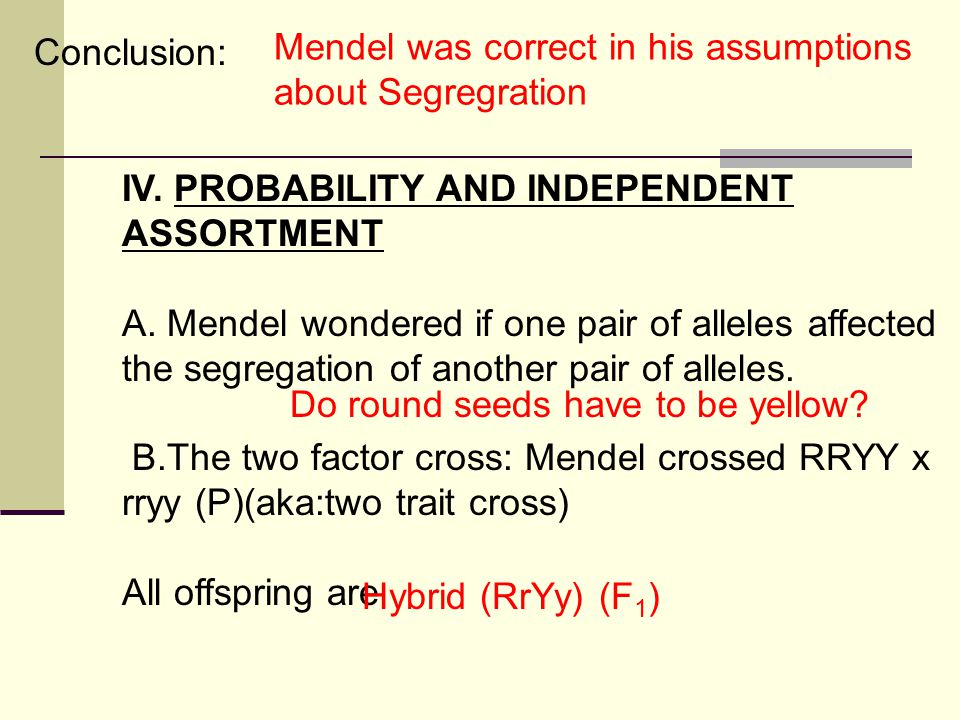 Conclusion: Mendel was correct in his assumptions about Segregration. IV. PROBABILITY AND INDEPENDENT ASSORTMENT.