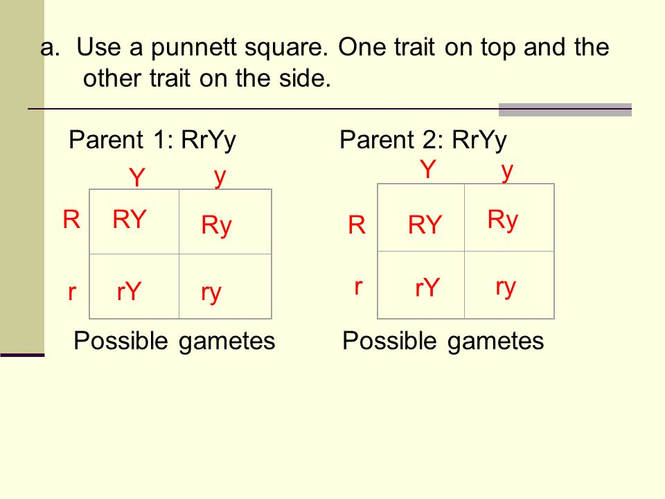 a. Use a punnett square. One trait on top and the