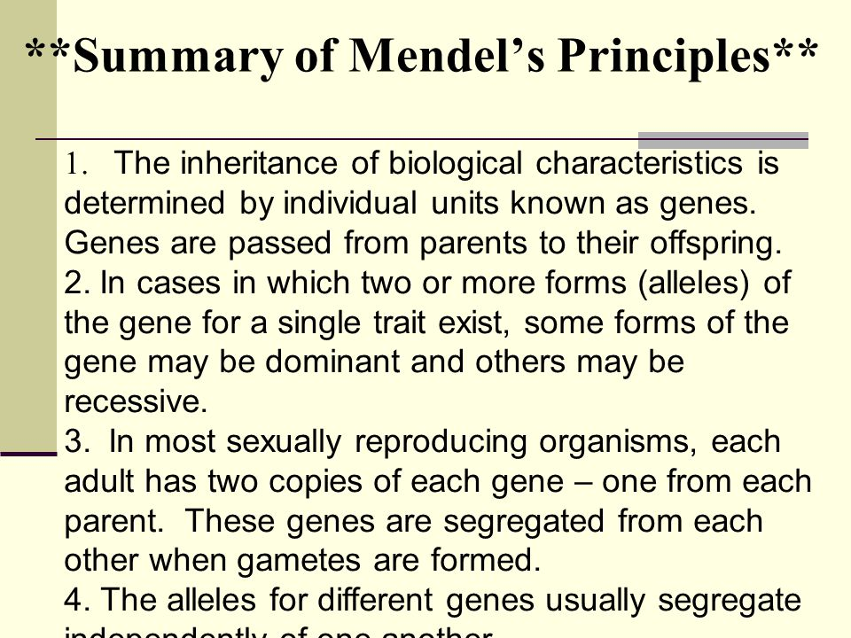 **Summary of Mendel's Principles**