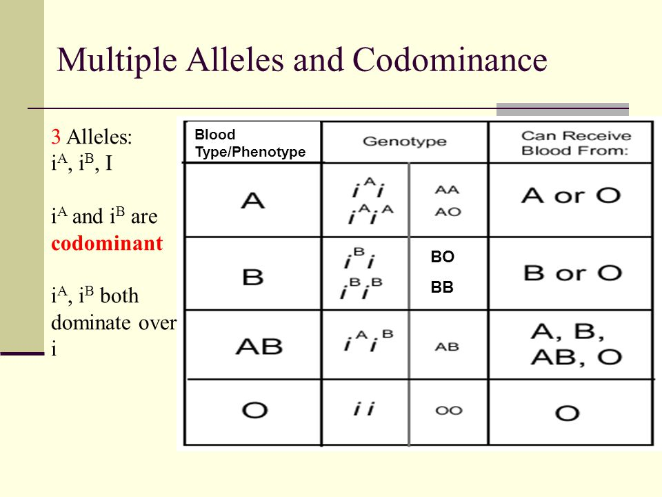 Multiple Alleles and Codominance